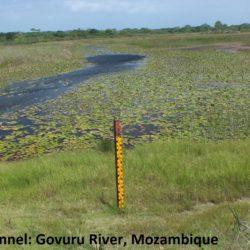 A12 Floodplain Channel S0067401