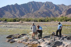 EWR Fish Team, Sendelingsdrif, Orange River, 2012